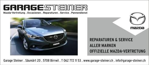 garage_steiner